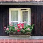 Okna z Opolskich Fabryk