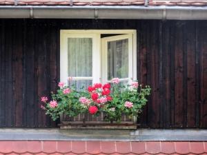 1425735_idyllic_little_window